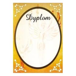 Dyplom Papierowy - DYP6