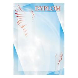 Dyplom Papierowy - DYP39