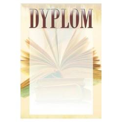 Dyplom Papierowy - DYP87