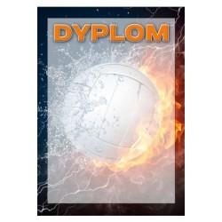 Dyplom Papierowy - DYP101