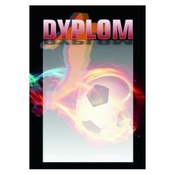 Dyplom Papierowy - DYP89