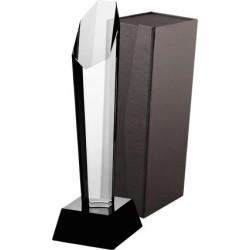 Trofeum szklane z etui G003-30