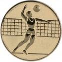 Emblemat samoprzylepny złoty - siatkówka - D2-A6/G