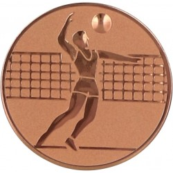 Emblemat samoprzylepny brązowy - siatkówka - D2-A6/B
