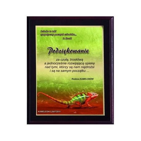 Dyplom drewniany z nadrukiem kolorowym - HG2554/G