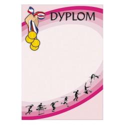 Dyplom Papierowy - DYP43