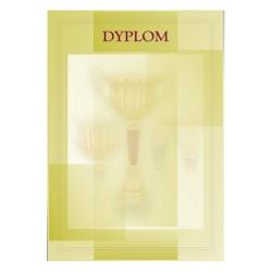 Dyplom Papierowy - DYP7