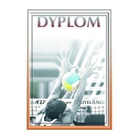 Dyplom Papierowy - DYP81