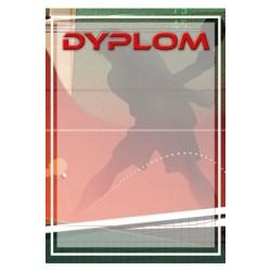 Dyplom Papierowy - DYP102