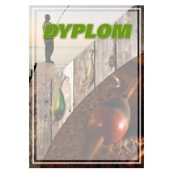 Dyplom Papierowy - DYP104