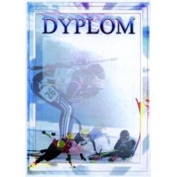 Dyplom Papierowy - DYP84