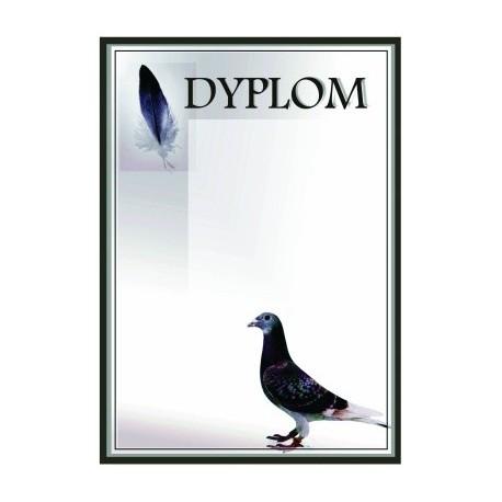 Dyplom Papierowy - DYP48