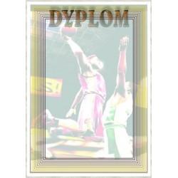 Dyplom Papierowy - DYP79