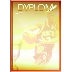 Dyplom Papierowy - DYP67