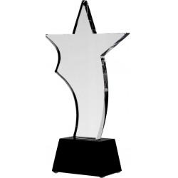 Trofeum szklane gwiazda z etui C035
