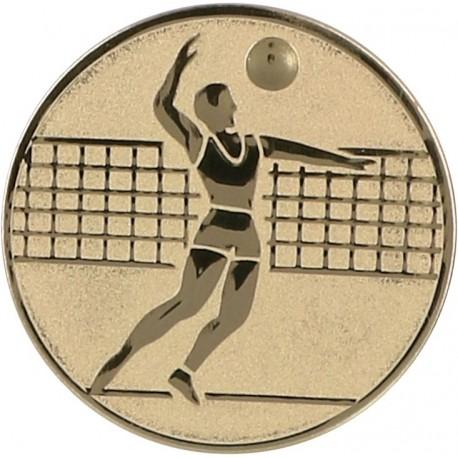 Emblemat samoprzylepny złoty - siatkówka - D1-A6/G
