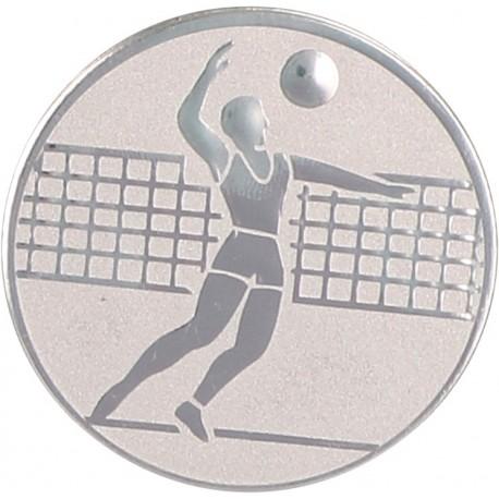 Emblemat samoprzylepny srebrny - siatkówka - D1-A6/S