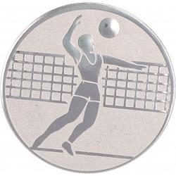 Emblemat samoprzylepny srebrny - siatkówka - D2-A6/S