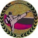 Emblemat hologramowy - karate - AGM211