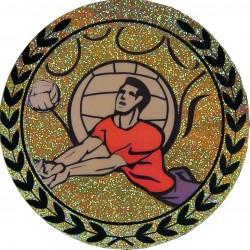 Emblemat hologramowy - siatkówka - AGM117